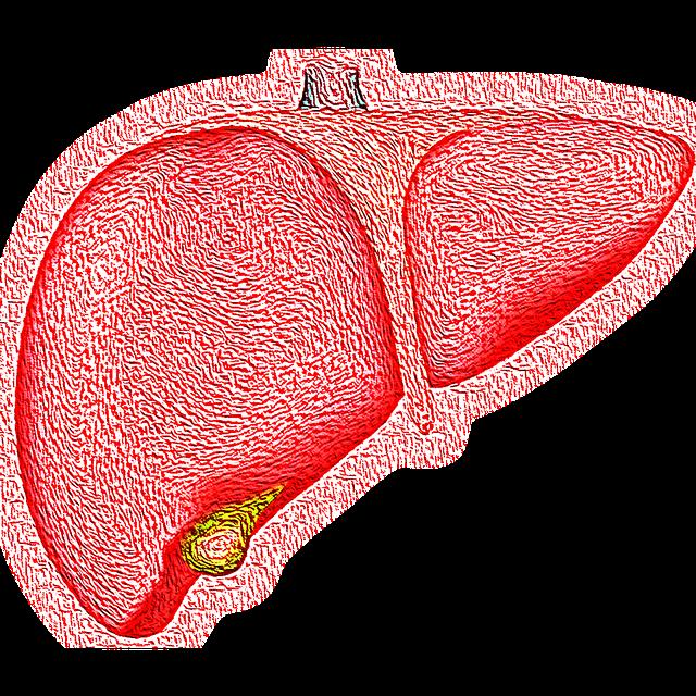 Hepatita C la vârsta fertilă